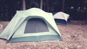 four person tents in the wood