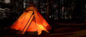a tent glowing in the dark woods of the night